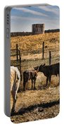 Williamson Valley Roundup 8 Portable Battery Charger