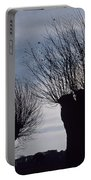 Willow Trees In Winter Portable Battery Charger