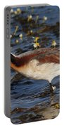 Wilson's Phalarope Portable Battery Charger