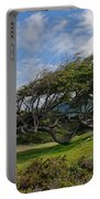 Wind-bent Tree In Tierra Del Fuego Patagonia  Portable Battery Charger