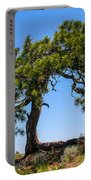 Lonesome Pine Tree Portable Battery Charger