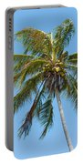 Windblown Coconut Palm Portable Battery Charger
