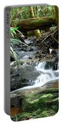 Winding Cascade Portable Battery Charger