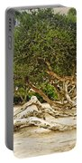 Windswept Portable Battery Charger