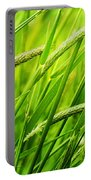 Windy Green Portable Battery Charger
