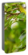 Wine Anyone Portable Battery Charger