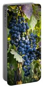 Wine Grapes Portable Battery Charger by Tetyana Kokhanets