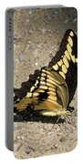 Winged Delight Portable Battery Charger