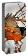 Wings Of A Robin Portable Battery Charger
