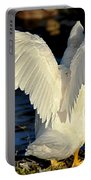 Wings Of A White Duck Portable Battery Charger