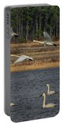 Wings Over Water 2 Portable Battery Charger