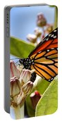 Wings Up Monarch Butterfly By Diana Sainz Portable Battery Charger