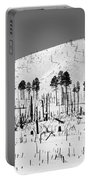 Winter After Fire-san Francisco Peaks Portable Battery Charger