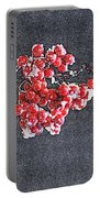 Winter Berries II Portable Battery Charger