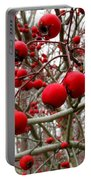 Winter Berryscape Portable Battery Charger