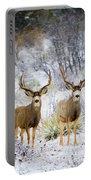 Winter Bucks Portable Battery Charger