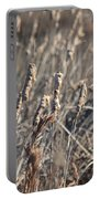 Winter Cattail Abstract Portable Battery Charger