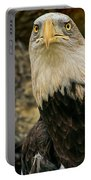 Winter Eagle Portable Battery Charger