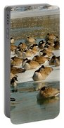 Winter Geese - 07 Portable Battery Charger