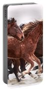 Winter Hardened Wild Horses Portable Battery Charger