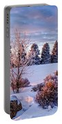 Winter In Pink Color Portable Battery Charger