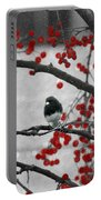 Winter Junco Portable Battery Charger