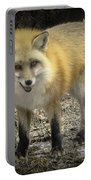 Winter Nature At Howell Nature Center Portable Battery Charger