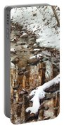 Winter - Natures Harmony Portable Battery Charger by Mike Savad
