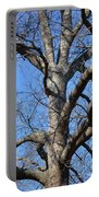 Winter Oak 2014 Portable Battery Charger