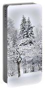 Winter Park Landscape Portable Battery Charger