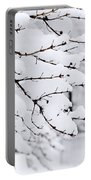 Winter Park Under Heavy Snow Portable Battery Charger