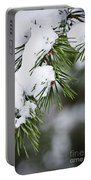 Winter Pine Branches Portable Battery Charger