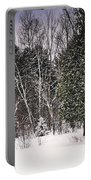 Winter Postcard Portable Battery Charger