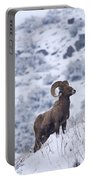 Winter Ram Portable Battery Charger