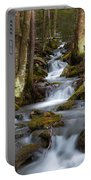 Winter Runoff Portable Battery Charger