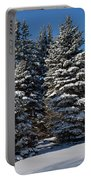 Winter Scenic Landscape Portable Battery Charger