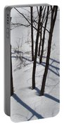 Winter Silence Portable Battery Charger
