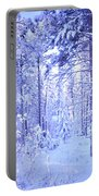 Winter Solace Portable Battery Charger