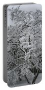 Winter Still Life Portable Battery Charger