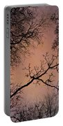 Winter Tree Canopy Portable Battery Charger