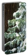 Winter Tree Sierra Nevada Mts Ca Usa Portable Battery Charger