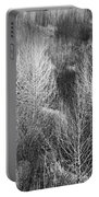 Winter Trees  B And W 1 Portable Battery Charger