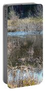 Winter Wetlands Of Alabama Portable Battery Charger