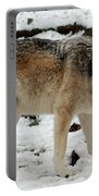 Winter Wolf In The Snow Portable Battery Charger
