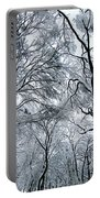 Winter Wonder Portable Battery Charger