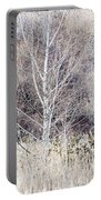 Winter Woodland With Subdued Colors Portable Battery Charger
