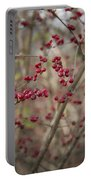 Winterberries Squared Portable Battery Charger