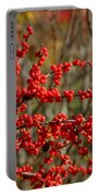 Winterberry Portable Battery Charger