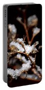 Winter's Night Portable Battery Charger