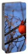Winter's Red Beauty 5 Portable Battery Charger